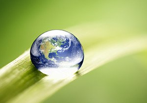 Leaf with earth in drop of water
