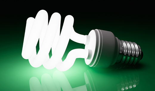 Illuminated Compact Fluorescent Light bulb
